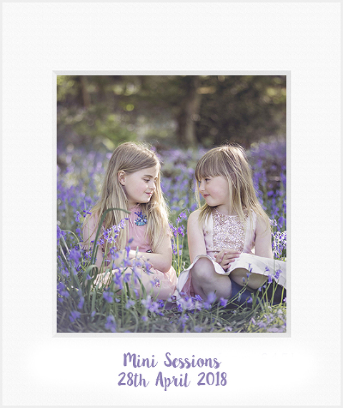 bluebell photos oswestry bluebell mini sessions